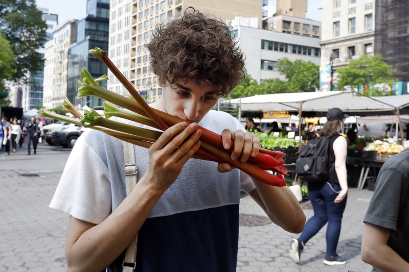 In this May 20, 2019 photo, Jonah Reider sniffs rhubarb as he shops in New York's Union Square Greenmarket for ingredients for his next dinner party. (AP Photo/Richard Drew)