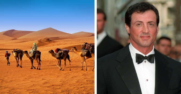 The world famous celebrity Sylvester Stallone asserted he used to be a supervisor of a nomadic tribe
