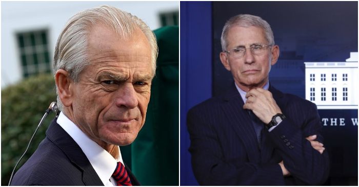 Peter Navarro and Anthony Fauci engage in a 'heated discussion' over a possible treatment for the CCP Virus