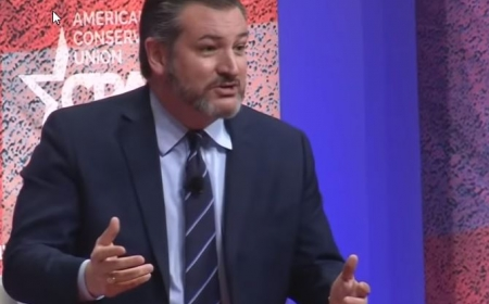 CPAC 2019 - Nationhood and the Border Crisis: A Conversation with Sen. Ted Cruz