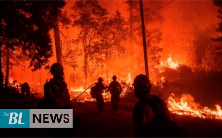 Mexico: Over 140 fires outbreaks registered in 21 states